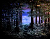 The World Beyond print, image of original artwork, enchanted forest