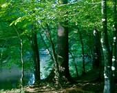 River Trail print