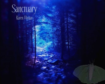 Sanctuary CD original compositions neoclassical ambient film fairy tale