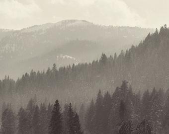Dreamy Black & White Hills - Square Fine Art Photograph - Unisex Forest Landscape Home Decor Photography