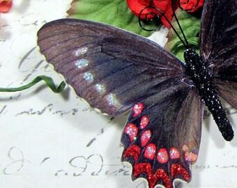 Butterfly Embellishments Blackbird