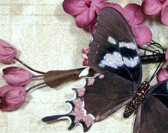 Butterfly Embellishments Natasha