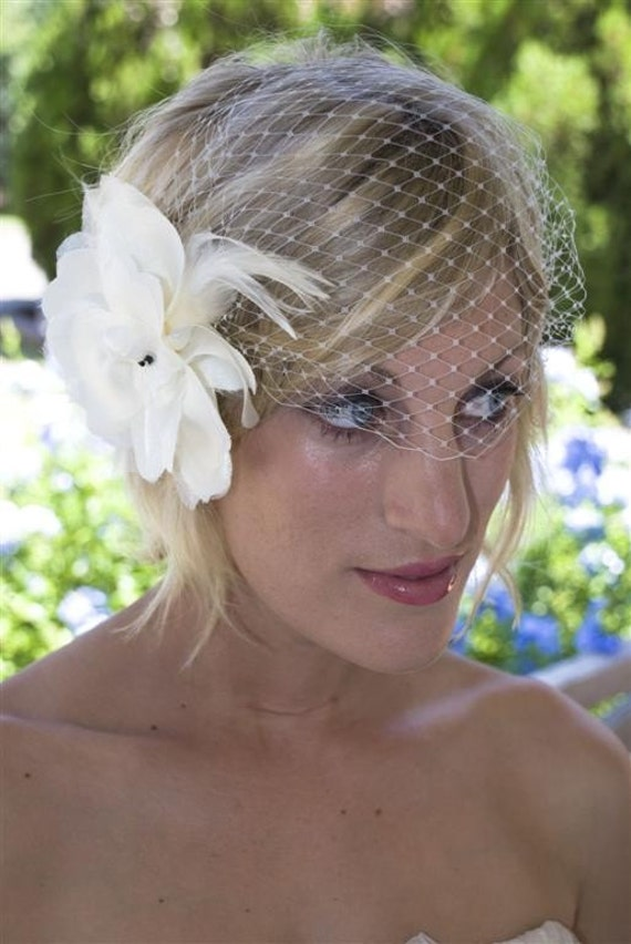 Birdcage Veil with Fascinator