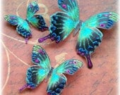 Butterfly Dreams.......Exotica