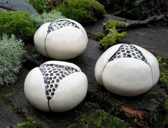 White Ceramic Pod Trio with Black and White Centers Wall Hanging