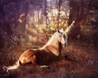 SALE Unicorn in a Sunlit Autumn Forest Fantasy Illustration 11 x 14 Art Print