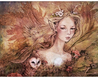 Titanias Daughter, 11 x 14 inch Fairy Owl Illustration Art Print