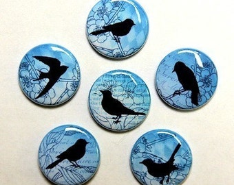 Blue Vintage Birds Set of 6 Buttons Pinbacks Badges 1 inch