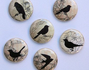 Brown Vintage Birds Set of 6 Buttons Pinbacks Badges 1 inch