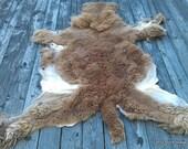 Alpaca Fur Pelt - Brown