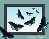 BUTTERFLY BLUE Fine Art Photography Print