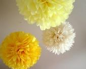 Daisy .. set of 3 tissue pom poms for weddings and birthdays