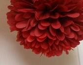 Scarlet - one pom