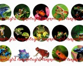 INSTANT DOWNLOAD...Frogs.... 1 Inch Circle Images Collage Sheet for Bottle Caps ...Buy 3 get 1