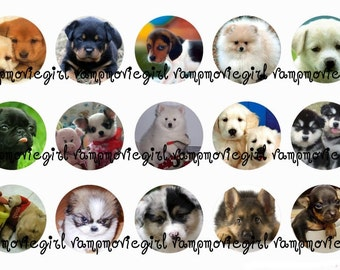 INSTANT DOWNLOAD...Puppies 2.... 1 Inch Circle Images Collage Sheet for Bottle Caps ...Buy 3 get 1