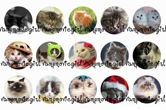 INSTANT DOWNLOAD...Cats and Kittens 1 Inch Circle Images Collage Sheet for Bottle Caps ...Buy 3 get 1 Free
