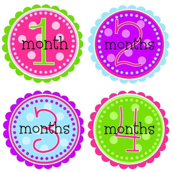 NEW...Baby Girl Monthly Onesie Stickers- The Haven Design- Great for new moms and baby shower gifts