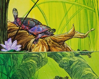 Painted Turtles on Log, giclee print: original art for book illustration