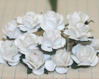12 White Paper Roses