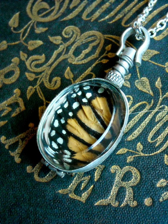 Real Butterfly Wing Locket