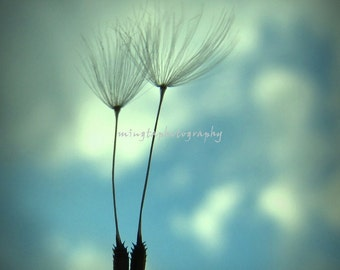 Just Us - Two Dandelion Seeds Just two of us Wedding Spring Valentine Gift for her Love you Love me color winter photography