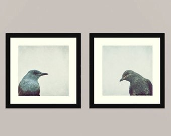 And Your Point is - Original Curious Thrush couple Feathered friend Feather Bird watching Love bird wall decor Birder Fine Art two 8x8
