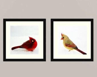 Cardinals set - Cardinal couple angry birds winter bird in snow Feathered friend bird watching Love bird wall decor Birder Fine Art two 4x4