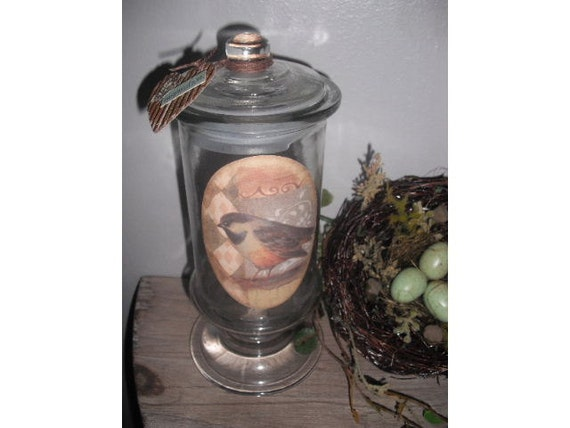 Upcycled Apothecary candy Jar ... storage .... Bird .... inspiration .... gift