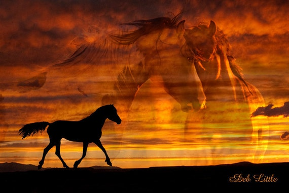 Trail of the Setting Sun - Wild Horses - Photo Fusion - Fine Art Photograph