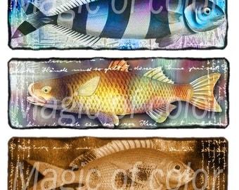 Fanciful Fish - 12  1x3 Inch Rectangular  JPG images - Digital  Collage Sheet