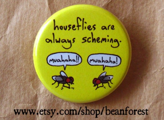 houseflies are always scheming - pinback button badge