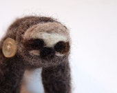 Mojave the Pocket Sloth