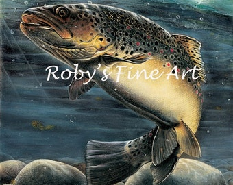 Garrett's Brown Trout - 5 x 7 inch Open End Print
