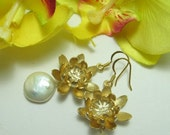 Golden Chrysanthemum Flower and Large Freshwater Coin Pearl  - Earrings