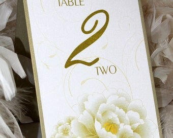 Peonies and Hydrangeas Table Numbers - Set of 10 - Tented