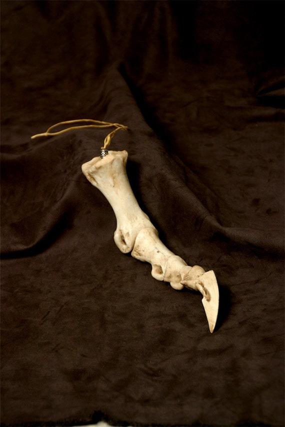 Articulated Dragon Claw Bone - Small Talon