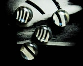 Magnets ( set of three zebra magnets PLUS a free zebra magnet)