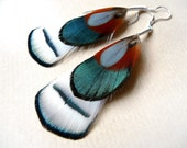 Iridescent, Green, Orange, Black and White Feather Earrings