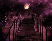 "Nature Photography, Fantasy Moon Birds, Gothic Starry Night, Dark Moon Plum Mauve Landscape, Fairytale Photos 6"" x 9"""