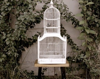 Old Bird Cage - Photography Art Print