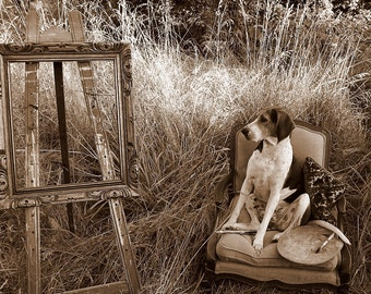 Photography Print - Patcha The Painter