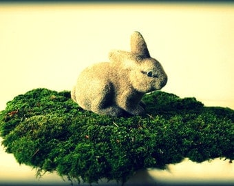 Vintage Rabit Toy - Cross Processed Fine Art Photography