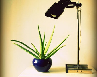 Mid Century Modern Lamp - Cross Processed Photography Print