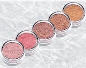 PINK MAUVE BROWN Eyeshadow kit NeutralMineral  rose purple set bare Neutral blush Eye Shadow Liner TiaraLx