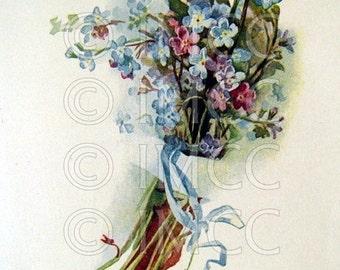 Digital Download SCAN Vintage Forget Me Nots Blue Floral Flowers ECS