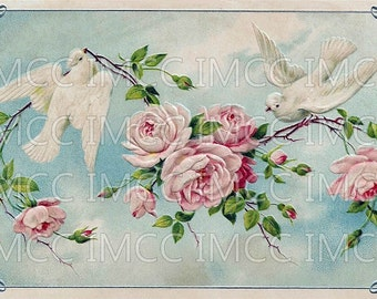 Digital Download Scan Vintage Postcard Pink Chic Roses Shabby White Doves Birds U Print