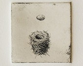 Bird Nest and Egg reproduction print-from original etching