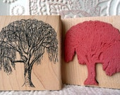 Birch Tree rubber stamp from oldislandstamps