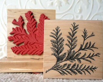 Birch Tree Rubber Stamp From Oldislandstamps By