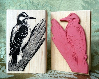 Hairy Woodpecker Bird rubber stamp from oldislandstamps